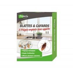 Pièges à blattes et cafards