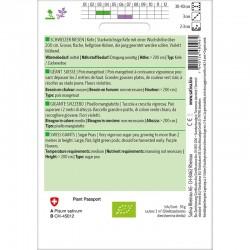 """Graines de vesce bio """"La Semence Bio®"""" idéales pour une utilisation en tant qu'engrais vert"""