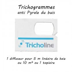 Trichogrammes anti pyrale...