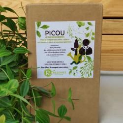 Activateur de compost Picou
